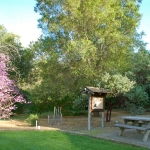 Bothe-Napa Valley Native Garden