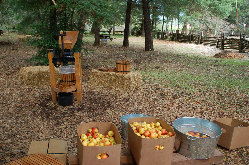 Old Mill Days - apple press