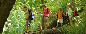hiking-children-trees-1024__home-page